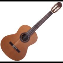 JM Forest - Student 4/4-es klasszikus gitár ajándék puhatok