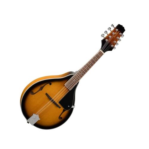 Soundsation - BMA 50 VS Bluegrass Mandolin