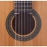 Kép 3/3 - Prodipe - Primera 1/2-es klasszikus gitár ajándék puhatok