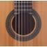 Kép 3/3 - Prodipe - Primera 1/2-es klasszikus gitár
