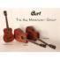 Kép 12/12 - Cort - AF510M-OP akusztikus folkgitár mahagóni