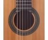 Prodipe - Primera 1/2-es klasszikus gitár