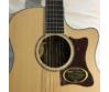Cort 12 húros akusztikus gitár Fishman EQ, matt natúr